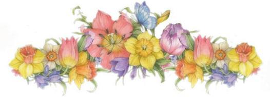 FloralDivider.jpg
