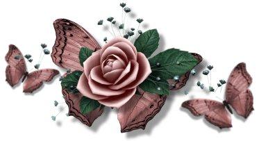 a_butterfly_bar.jpg