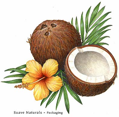 a_coconut.jpg