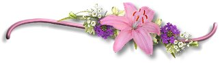 a_pink_bar.jpg